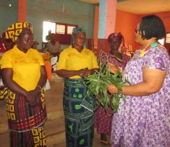 JPC Coordinator gives Symbolic Peace Plants to leaders of the Women Peace Committees in Ngoketunjia Division as a bond of Unity & Peace